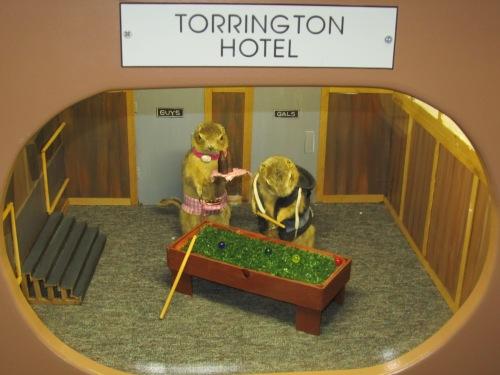 Torrington Hotel