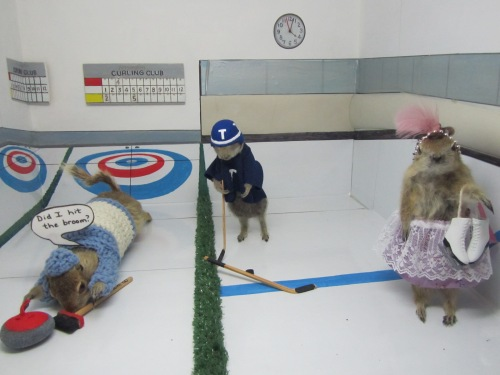 Ice Skating Gophers